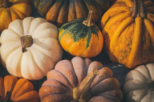 Fall-Themed Haiku Contest
